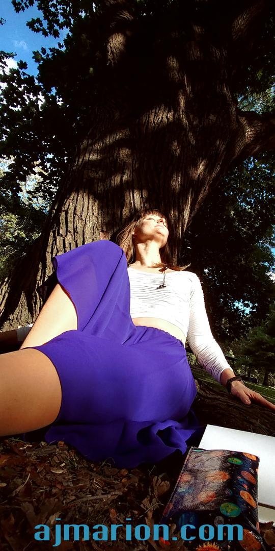 Pitts Sunshine Tree